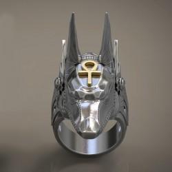 Anello Anubis 21mm interno