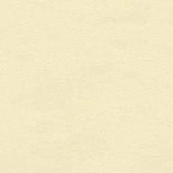 Carta pergamena vegetale consacrata